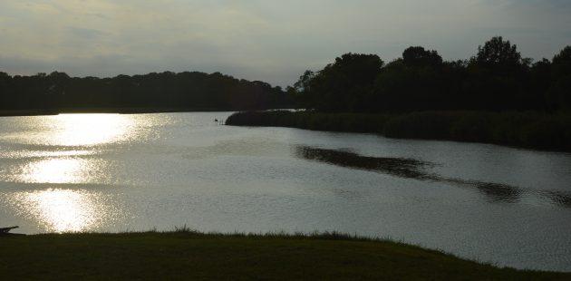 Maryland wetlands credit Anthony C. Hayes